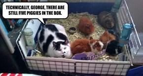 TECHNICALLY, GEORGE, THERE ARE STILL FIVE PIGGIES IN THE BOX.