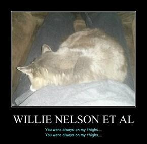 WILLIE NELSON ET AL