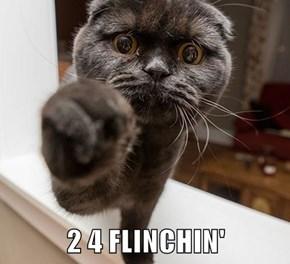 2 4 FLINCHIN'