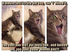 A mouse lost its life dat day.. cuz *I* killed it.  Yoo dont kno WUT dat feels like.. and buleeb me, yoo dont ebbur WANNA kno!!!
