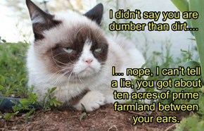 I didn't say you are dumber than dirt....