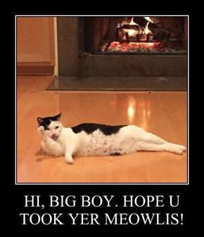 HI, BIG BOY. HOPE U TOOK YER MEOWLIS!