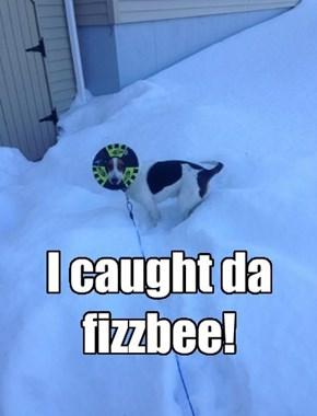 Fizzbee!