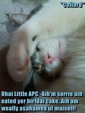 """Collard""  Ohai Little APC -Aih'm sorrie aih eated yer birfdai cake..Aih am weally asahamed uf maiseff!"