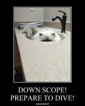 DOWN SCOPE! PREPARE TO DIVE!