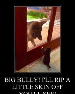 BIG BULLY! I'LL RIP A LITTLE SKIN OFF YOU'LL SEE!