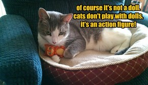of course it's not a doll. cats don't play with dolls. it's an action figure!