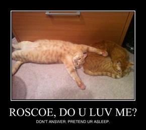 ROSCOE, DO U LUV ME?