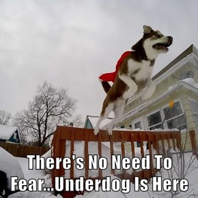 There's No Need To Fear...Underdog Is Here