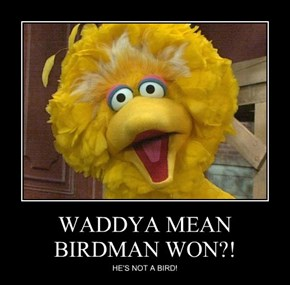 WADDYA MEAN BIRDMAN WON?!