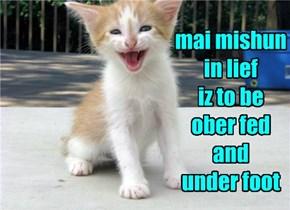 In Teh Meentiem I Will Be Mobin' Sidewayz