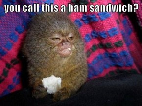 you call this a ham sandwich?