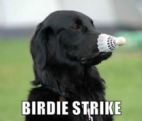 BIRDIE STRIKE