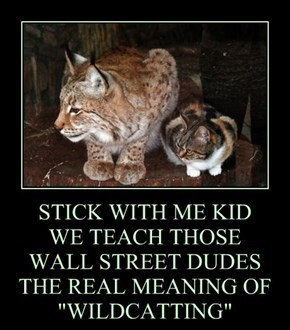 """STICK WITH ME KID WE TEACH THOSE  WALL STREET DUDES THE REAL MEANING OF """"WILDCATTING"""""""
