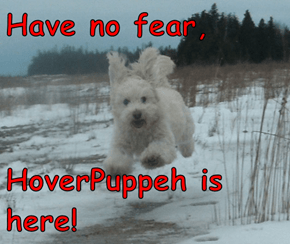 Have no fear,  HoverPuppeh is here!