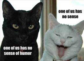 one of us has no sense of humor