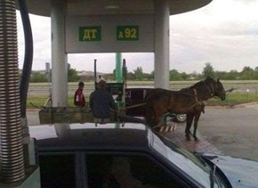 Time to Fuel Up Your Horses