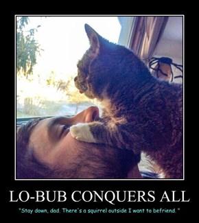 LO-BUB CONQUERS ALL