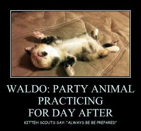 WALDO: PARTY ANIMAL PRACTICING  FOR DAY AFTER