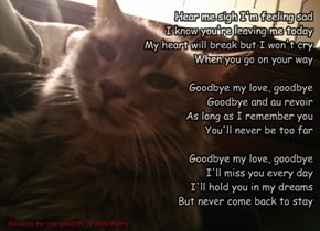 Song for Graycee: Goodbye my love, goodbye