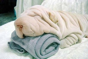 Just a Pile of Towels