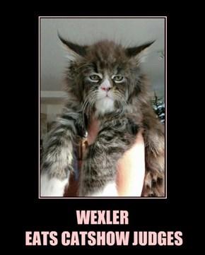 WEXLER  EATS CATSHOW JUDGES