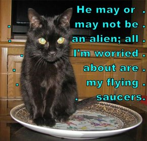 He may or  .                           .                  may not be .     .                 an alien; all . .              I'm worried .       .                   about are .   .                   my flying .     .     saucers.
