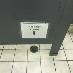 Then Why Did You Put it in the Bathroom, Genius?
