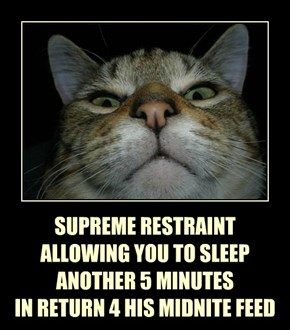 SUPREME RESTRAINT ALLOWING YOU TO SLEEP ANOTHER 5 MINUTES IN RETURN 4 HIS MIDNITE FEED
