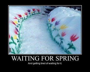 Spring Will Never Come