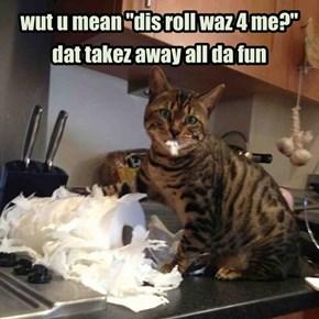 kittehz no like cat-designated toyz