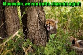 Mooooom, we ran outta charmin agin!!