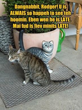 Dangnabbit, Rodger! U is ALWAIS so happeh to see teh hoomin. Eben wen he is LATE. Mai fud is fiev minits LATE!