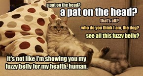 a pat on the head?