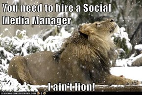 You need to hire a Social Media Manager  I ain't lion!