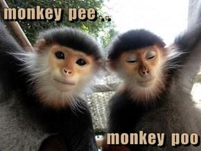Monkey Pee... Monkey Poo...