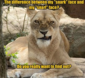 "The difference between my ""snark"" face and my ""snarl"" face?           Do you really want to find out?"