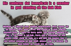 Offishul JeffCatsBookClub Memburship Kard for luvmy8catz