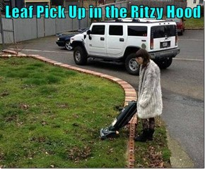 Leaf Pick Up in the Ritzy Hood