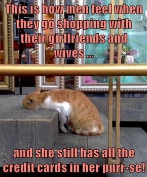 This is how men feel when they go shopping with their girlfriends and wives ...  and she still has all the credit cards in her purr-se!