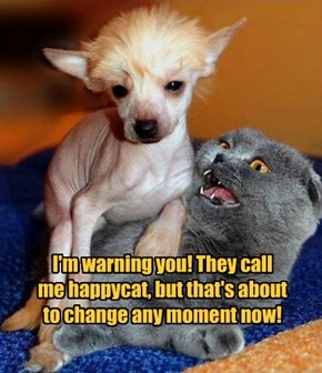 I'm warning you! They call  me happycat, but that's about  to change any moment now!