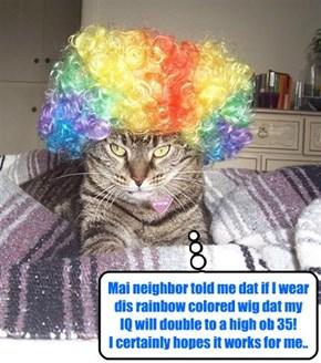Dis kittie beleebs in Global Warming..
