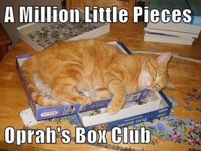 A Million Little Pieces  Oprah's Box Club