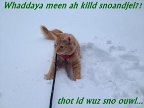Whaddaya meen ah killd snoandjel?!  thot id wuz sno ouwl...