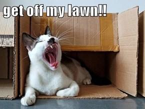 get off my lawn!!