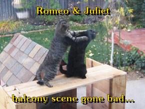Romeo & Juliet  balcony scene gone bad...