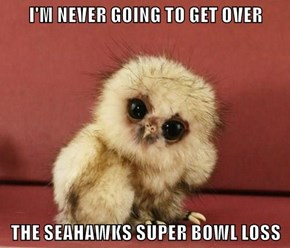 I'M NEVER GOING TO GET OVER  THE SEAHAWKS SUPER BOWL LOSS