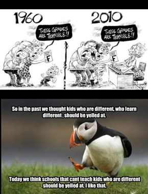 Puffins Have a Different Perception About The Changes in The School System