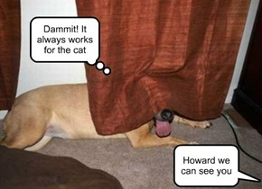 Howard we can see you