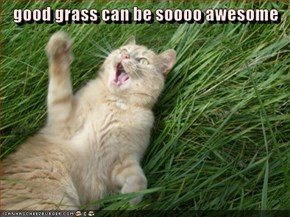 good grass can be soooo awesome
